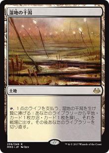 湿地の干潟_mm3