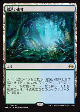 3霧深い雨林