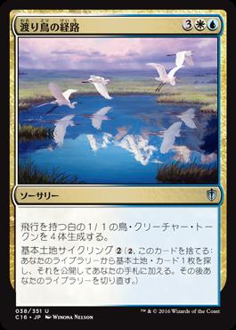 7渡り鳥の経路