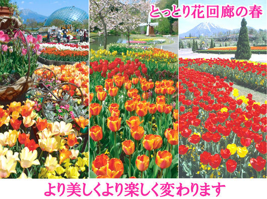 hanakairo_spring
