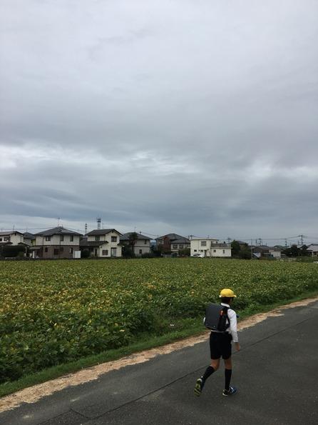 2017-10-18-07-20-08