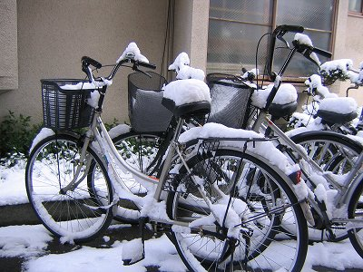 004-snow_on_albert