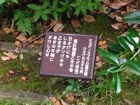 2014-05-26-otome05