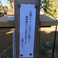 20160208-さる4
