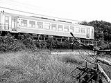 DSCN9679
