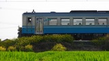 DSCN7896