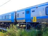 DSCF2394