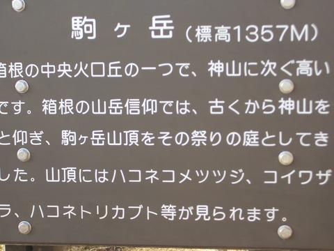 20131124_131216_CIMG3800