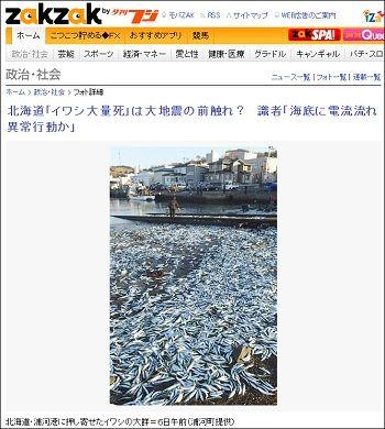 sardines_2