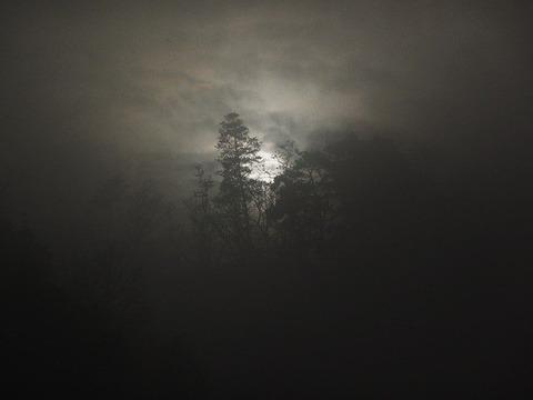 fog-18936_640