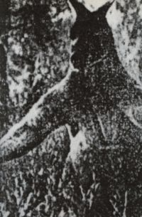 HtzUNKq