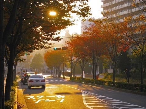 autumn-1725205_640