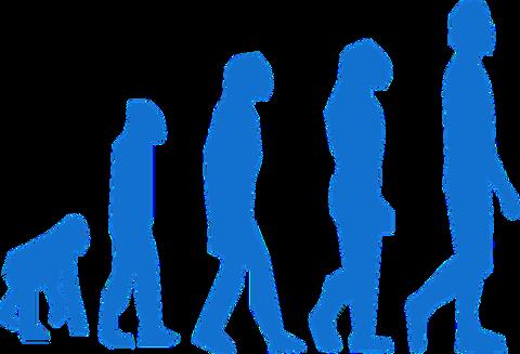 evolution-296400_960_720