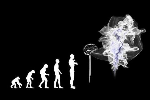 evolution-g466bd51fe_640
