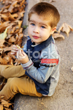 stock-photo-47888132-little-toddler-boy-in-autumn-park