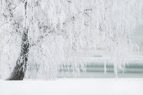 winter-1367153_960_720