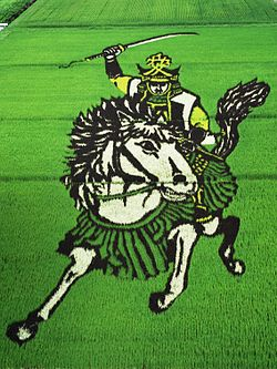 250px-Sengoku_busho_of_rice_field_art
