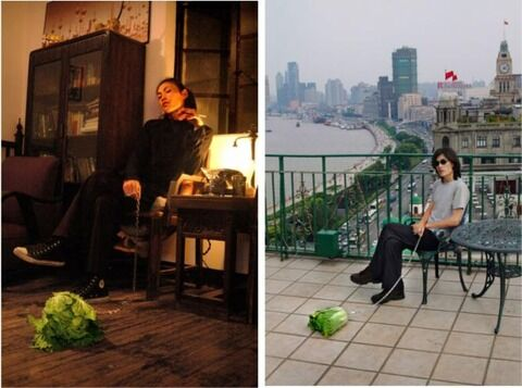 56-145352-cabbage-in-shanghai