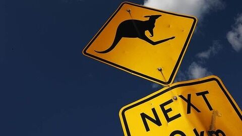kangaroo-sign_729-620x349