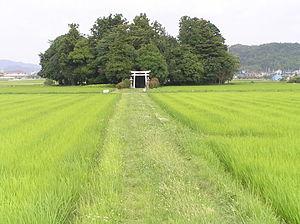 300px-Sasayama1