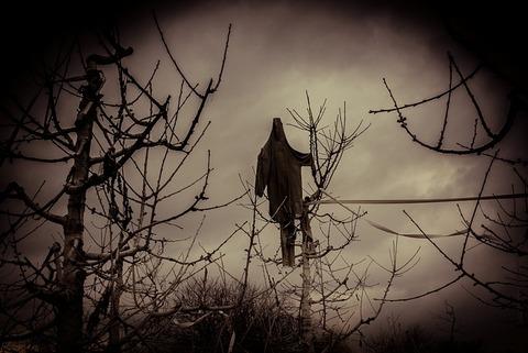 scarecrow-4984998_640
