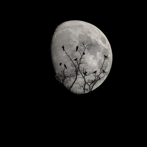 moon-2093161_1280