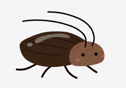 【動画あり】台所に出たゴキブリをリズミカルにおびき出すお ...