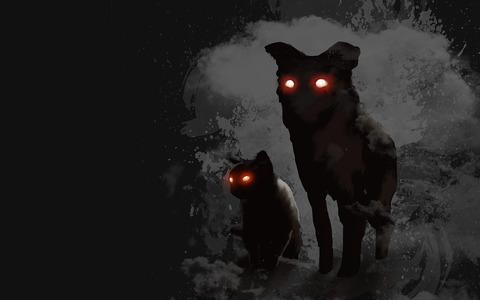 dog-4266512_1280