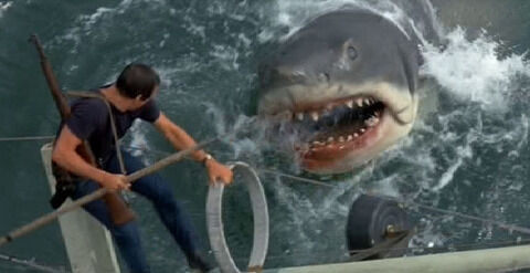 m_Jaws-jaws-468735_686_353