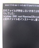 b1d20c31.jpg