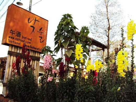 【ネパール13】 大ポカラ民国