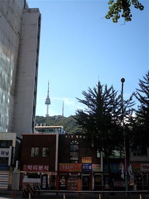 しまのこの大冒険 南山ソウルタワー&インドカレー
