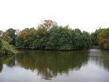 三田市の池