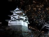 弘前城ー夜桜