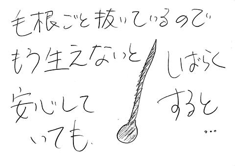 190718_0917_001-4