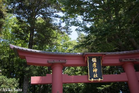 nagaoka_blog-27