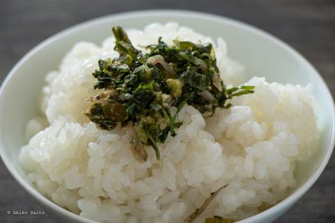 静岡野菜-24