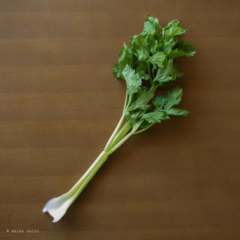 静岡野菜-4