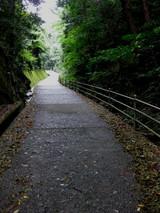 八栗寺参道1026その4