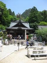 大窪寺0531お寺で飛び跳ねるぴょんこさん