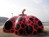 直島0223赤かぼちゃ10:30