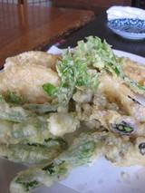 ねぶか庵0423山菜の天ぷら