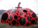 直島0223赤かぼちゃ9:30