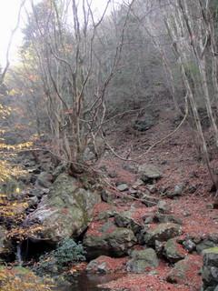 琴南の山1207