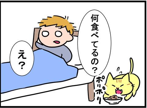 utsu_20181109_3