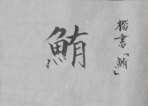 No.23d_maguro