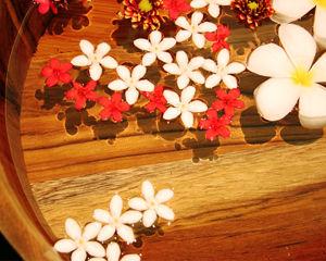 flower001_s