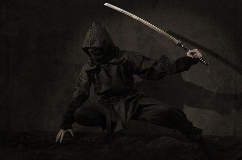ninja-54e0d5444f_640
