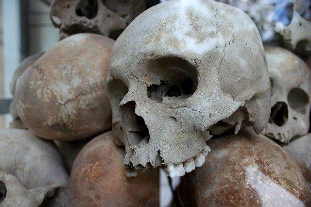 skulls-1433178_640