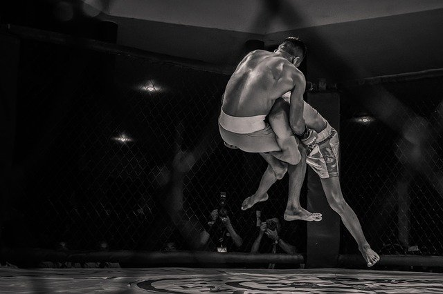 boxing-3897488_640 (1)